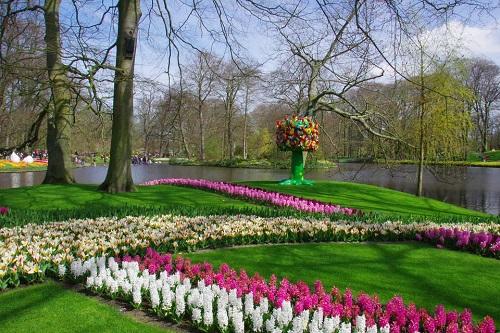 公园花园保水剂