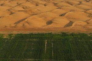 沙漠治理保水剂