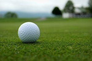 高尔夫球场保水剂