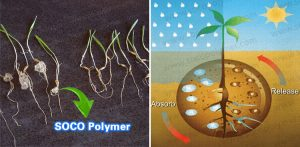 SOCO-Polymer-Agriculture-Agricultural-Super-Absorbent-Potassium-Polyacrylate-Used-for-Water-Retaining-3