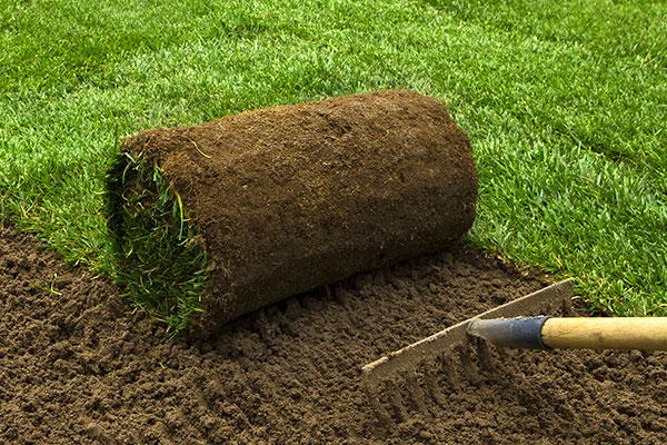 SOCO® 保水剂适用于草坪和草皮生长周期