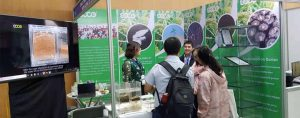 soco-vietnam-Agricultural-Potassium-Polyacrylate-exhibition-02